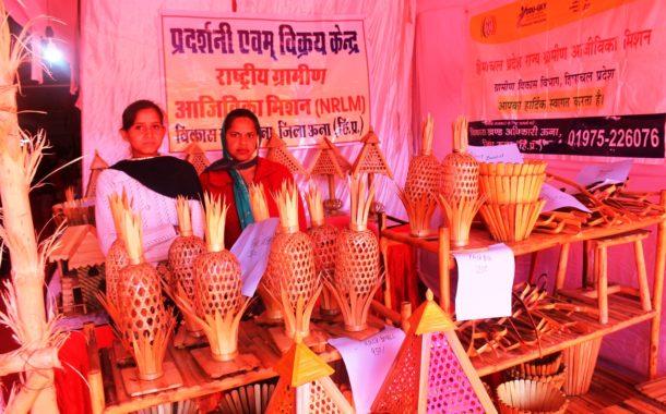सरस मेले में हाथ से बने उत्पाद बने आकर्षण का केंद्र, खरीददारी के लिए उमड़ी भीड़