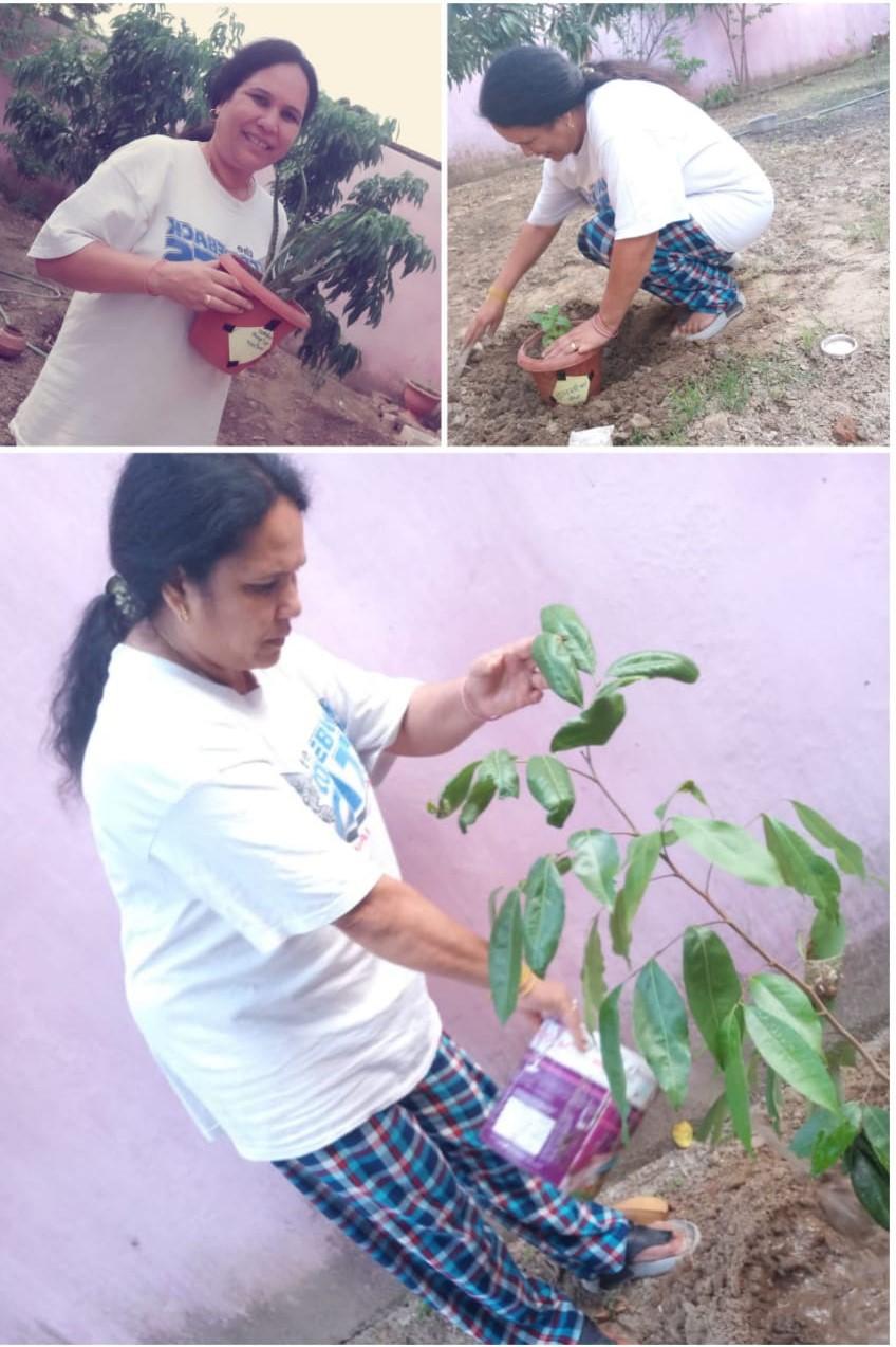 स्वयंसेवी अपने घरो के आस-पास औषधीय पौधे व अन्य पेड-पौधो लगा रहे
