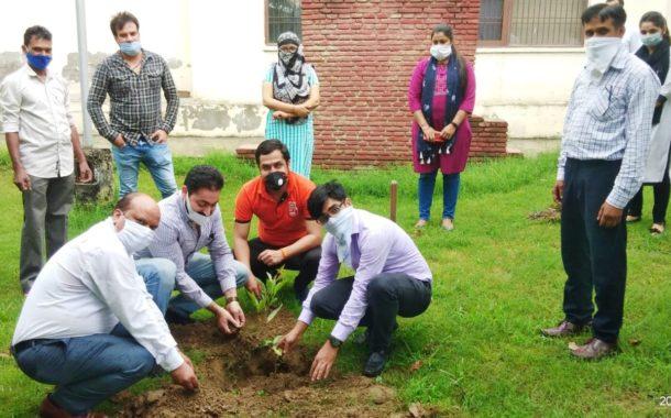 डीएलएसए ने किया पर्यावरण बचाओ अभियान शुरू